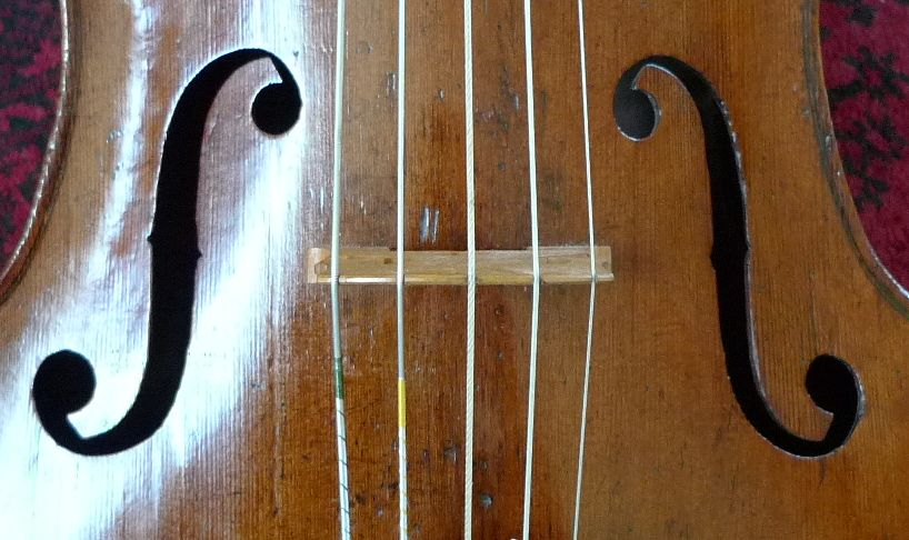 Five string piccolo cello